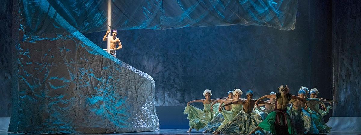 The Little Mermaid Ballet - AluShape Cretonne