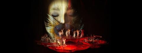 Björk Cornucopia - projection surface